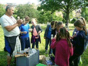 Schüler schauen sich Insekten an Schüler lernen etwas von Insekten