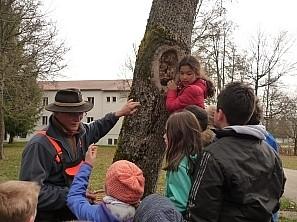 Kinder mit gefälltem Baum Schülerin klettert auf einen Baum