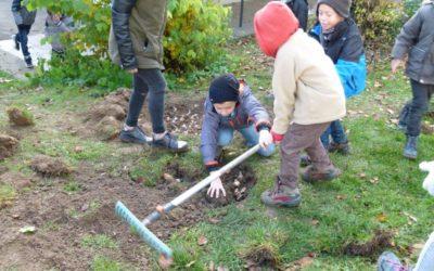 Kinder pflanzen Blumenzwiebeln