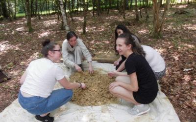 Schülergruppe im Wald